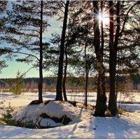 Весна :: Вячеслав Минаев