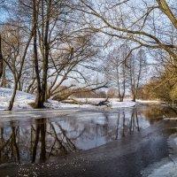 Ну вот и Весна! :: Андрей Дворников