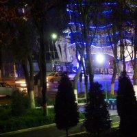 Смотрю ..однажды ночью...а там.... :: Людмила Богданова (Скачко)