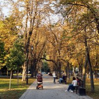 Осенний парк :: Евгений Р