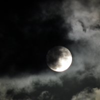 В живописных облаках :: Natalia Harries