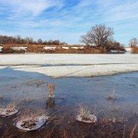 Неуютно льдинам на реке... :: Лесо-Вед (Баранов)