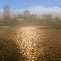 Утро туманное на реке :: Марк