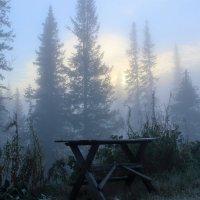 Холодный утренник :: Сергей Чиняев