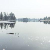 Весна наРазливе :: Виталий