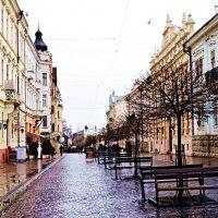 Дощ :: Степан Карачко