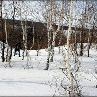 Лыжник всегда снега найдёт:)) :: Андрей Заломленков