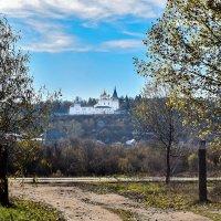 Никольский монастырь, мужской :: Марина Ломина