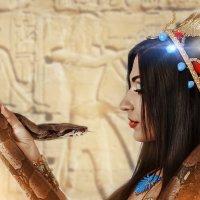 Магия Египта :: Алена Колошва