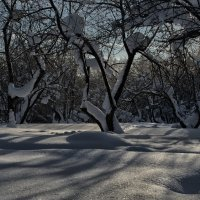 Зима :: Василий Ахатов