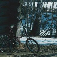 велосипед :: Сергей Калистратов