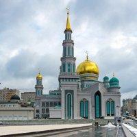 Москва :: Наталья Краснюк
