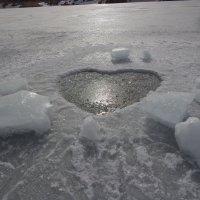 Сердце во льду! :: Vladikom