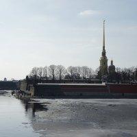 Петропавловская крепость :: Елена Смолова