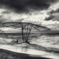 На одичавшем пляже. :: Анатолий Щербак
