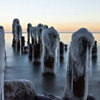 Седая Балтика :: Геннадий Новов