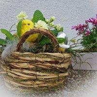 Весенний.... :: Galina Dzubina