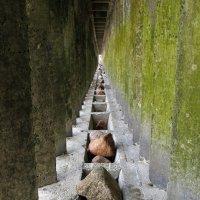 Тоннель всё тот же, свет иной. :: Анастасия Алёшина