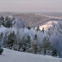 Серебристая зима :: Татьяна Соловьева
