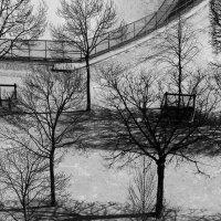 Сад Тюильри́ :: Elen Dol