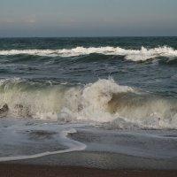 Холодное море в день 8 марта. :: Lara