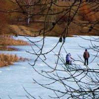 Весенняя рыбалка :: Людмила Монахова