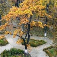 уголок парка :: Леонид Натапов