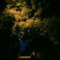 Ночная улица :: Александр Баранов