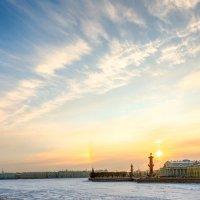 Морозное утро. :: dragonflight78.klimov
