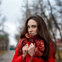 Холодно...) :: Наталья Шелыганова