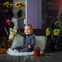 мальчик :: Ванда Азарова