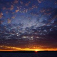 Вечернее небо поздней весны :: Сергей Добрыднев
