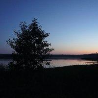 Озеро  Корегощ у дер. Никола-Рожок :: Елена Смолова