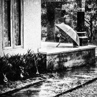 дождь :: Леон Б