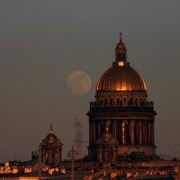 Лунный вечер :: Вера Моисеева