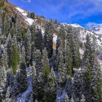 после снега в горах :: Марат Макс