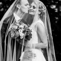 Свадебная прогулка :: Алла Елисеева