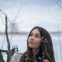 весна :: Елена Морокина