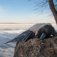 Смерть зимы :: Александр Елизаров