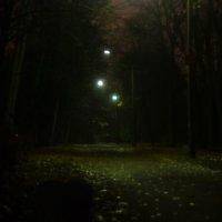 прогулка по ночному осеннему парку :: Владислав Попов