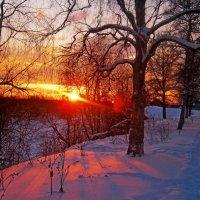 Восход зимой :: Наталья Зимирева