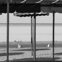 море, пляж :: Ирина Сафонова