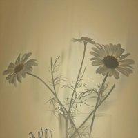 Весна.Поэзия. Цветы. Мы вместе -  я и ты.... :: Tatiana Markova