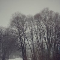 У нас весна пока - не задалась.. :: Алексей Макшаков