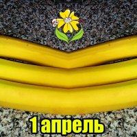 1 апреля. Фокус с бананами. :) С праздником смеха, друзья! :: Nina Yudicheva