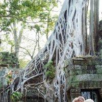 Камбоджа. Ангкор Ват. :: Cергей Павлович