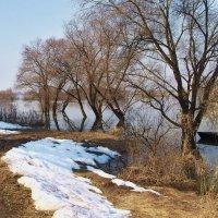 Последний снег на берегу... :: Лесо-Вед (Баранов)
