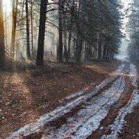 Тающей судьбой грустят дороги... :: Лесо-Вед (Баранов)