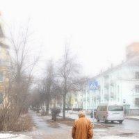 бредущая в туман... :: Елена Фёдорова