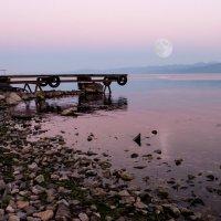 Восход луны :: Александр Кузьмин